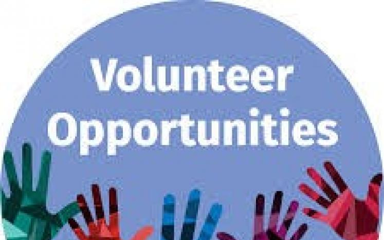 Volunteer for Boards and Commissions